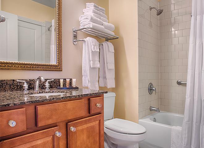new-orleans-louisiana-wyndham-la-belle-maison-bathroom